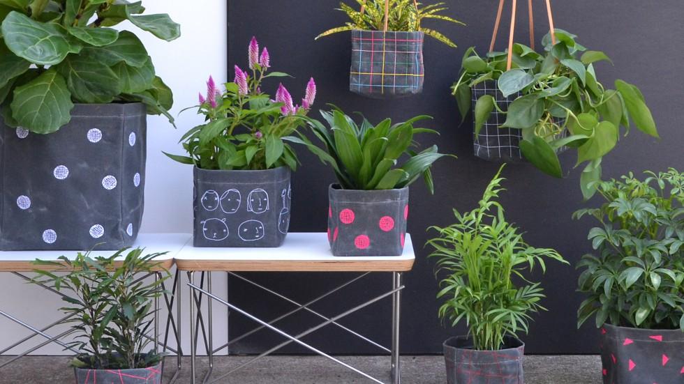 plants-2-for-slideshow